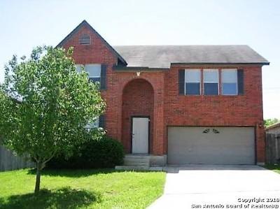 Converse Single Family Home New: 8102 Talkenhorn