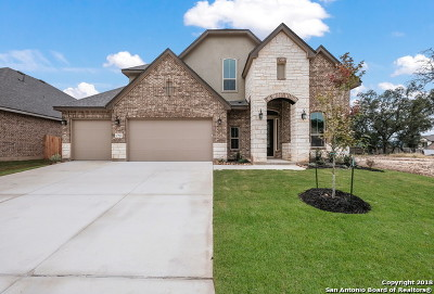 Boerne Single Family Home New: 27022 Daffodil Place