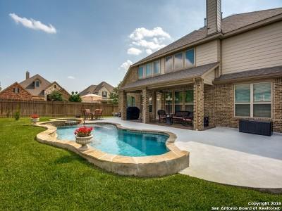 Alamo Ranch Single Family Home For Sale: 5302 Angel Sergio