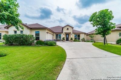 Fair Oaks Ranch Single Family Home New: 30022 Cibolo Path