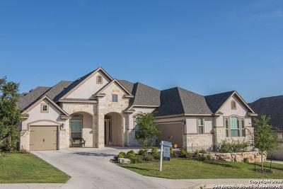 San Antonio Single Family Home New: 4110 Monteverde Run