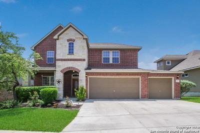 San Antonio Single Family Home New: 2730 Trinity View