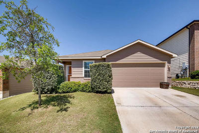 Boerne Single Family Home New: 27215 Rio Cove