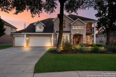 San Antonio Single Family Home New: 906 Desert Bluff