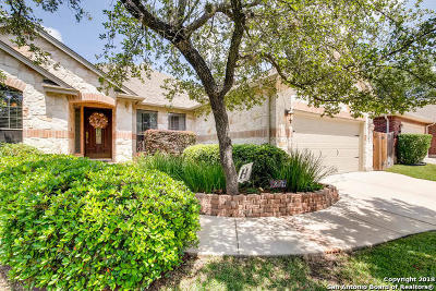 Helotes Single Family Home New: 9207 Scotford