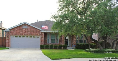 San Antonio Single Family Home New: 22845 San Saba Bluff