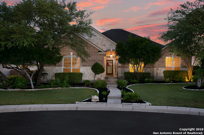 Helotes Single Family Home New: 9207 Trailing Fern