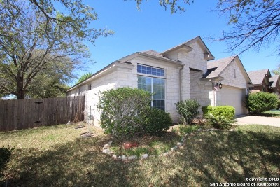 Travis County Single Family Home For Sale: 10016 Buffalo Lake Ln