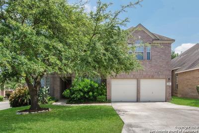 San Antonio Single Family Home New: 19507 Battle Oak