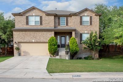 San Antonio Single Family Home New: 20510 Ashmont