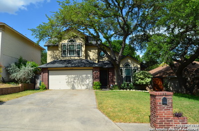 San Antonio Single Family Home For Sale: 15039 Digger Dr