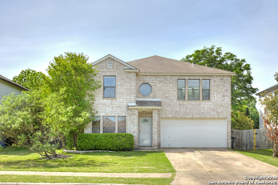 New Braunfels Single Family Home New: 359 Stone Pt