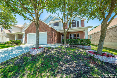 Single Family Home New: 22918 Cardigan Chase