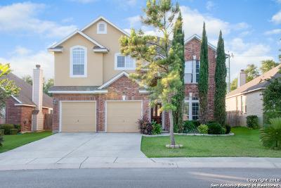 San Antonio Single Family Home New: 1119 Willow Knoll