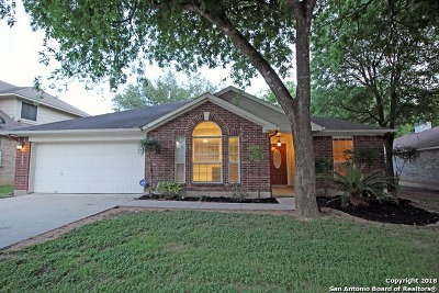 Schertz Single Family Home New: 1013 Sandy Ridge Cir