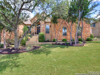 Boerne Single Family Home New: 10422 Star Mica