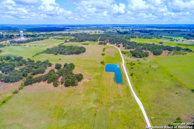 Stockdale TX Farm & Ranch For Sale: $825,000