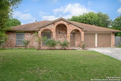 San Antonio Single Family Home New: 2902 Desert Morning St