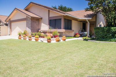San Antonio Single Family Home New: 9207 Points Edge