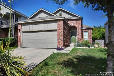 San Antonio Single Family Home New: 434 Tequila Ranch