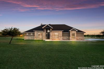 San Antonio Single Family Home Back on Market: 8918 New Sulphur Springs Rd