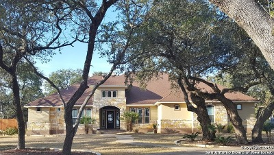 New Braunfels Single Family Home New: 1617 Shady Hollow