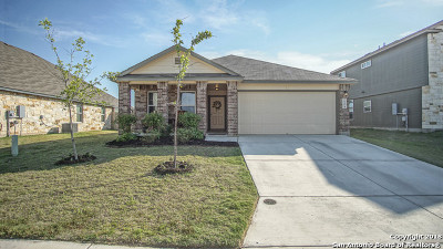 New Braunfels Single Family Home New: 2254 Olive Hill Dr