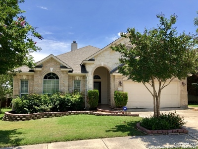Helotes Single Family Home For Sale: 14220 Dona Ana Dr