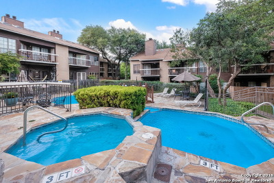San Antonio Condo/Townhouse New: 8633 Datapoint Dr #217