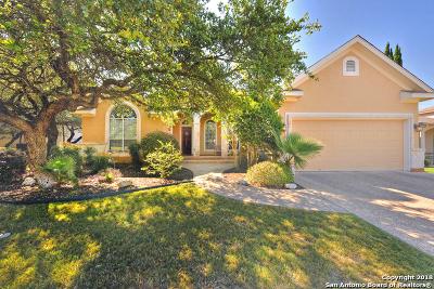 San Antonio Single Family Home New: 20806 Cactus Loop