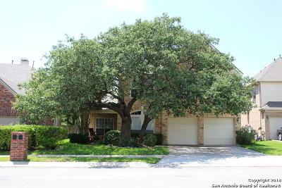 San Antonio Single Family Home New: 20207 Standish Rd