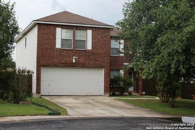 San Antonio TX Single Family Home New: $156,500