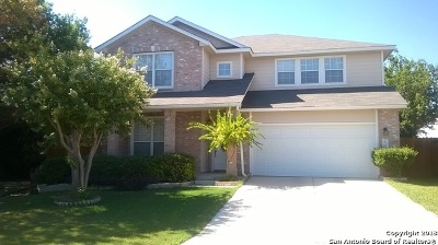 San Antonio TX Single Family Home New: $255,000