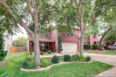 San Antonio Single Family Home New: 519 Mathis Meadows