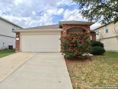 Cibolo Single Family Home New: 336 Longhorn Way
