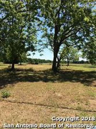 Seguin Residential Lots & Land For Sale: Tbd W Court