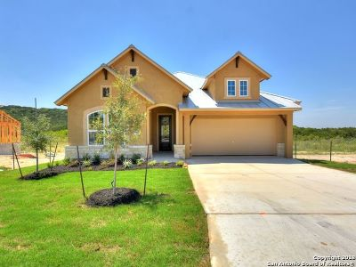 San Antonio TX Single Family Home New: $483,676