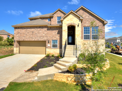 New Braunfels Single Family Home New: 616 Treetop Pass