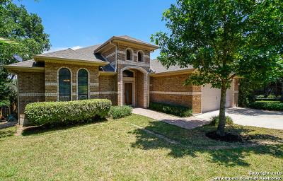 San Antonio TX Single Family Home New: $263,000