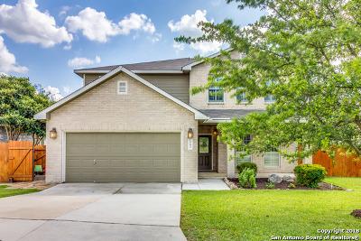 San Antonio TX Single Family Home New: $249,800