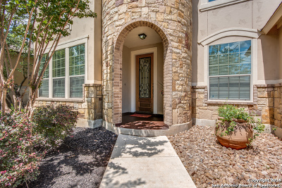Boerne Single Family Home New: 28018 Vine Cliff