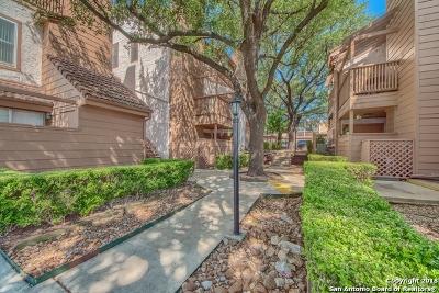 San Antonio TX Condo/Townhouse New: $950