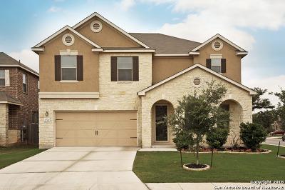 San Antonio Single Family Home New: 20319 Hillbrook Park