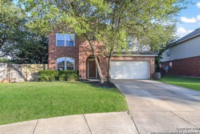 San Antonio Single Family Home New: 2822 Cascade Mist