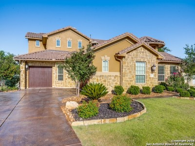 Cibolo Canyons Single Family Home For Sale: 3827 Luz Del Faro