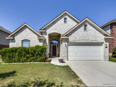 Cibolo Single Family Home New: 285 Cordero Dr