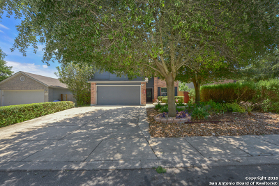 San Antonio Single Family Home New: 11114 Montague Trail