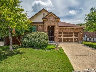 San Antonio Single Family Home New: 11918 Amsterdam