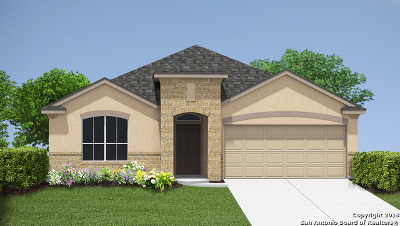 New Braunfels Single Family Home New: 1398 Fall Cover