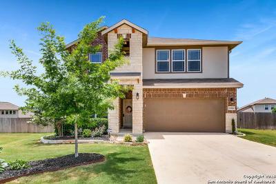 San Antonio Single Family Home New: 5703 McKinney Falls